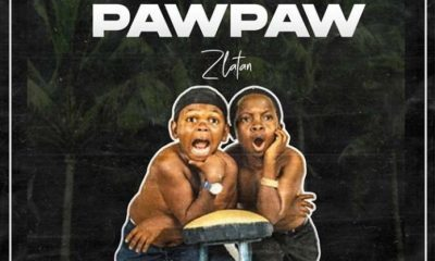 Download Music: Zlatan Unripe Pawpaw