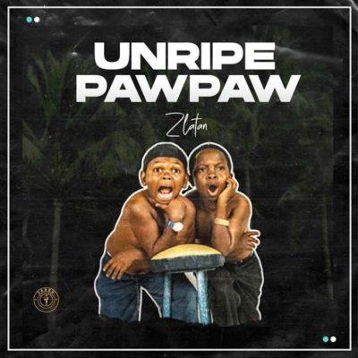 Download Music: Zlatan Unripe Pawpaw