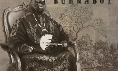 Download Music: Burna Boy- Odogwu