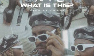 Kwamz – What Is This?