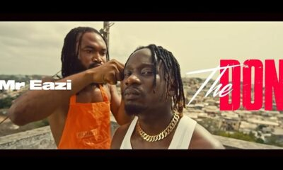 [Video] Mr Eazi – The Don